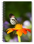 Piano Key Butterfly Spiral Notebook