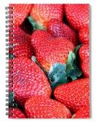 Plant City Strawberries Spiral Notebook