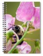 Pollination Nation II Spiral Notebook