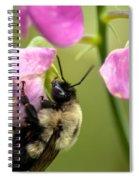 Pollination Nation V Spiral Notebook