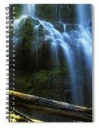 Proxy Falls Oregon Spiral Notebook