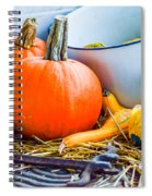 Pumpkins Decorations Spiral Notebook