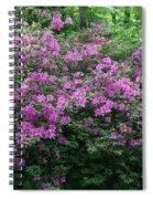 Purple Azaleas Spiral Notebook
