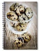 Quail Eggs Spiral Notebook
