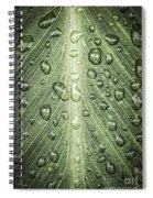 Raindrops On Green Leaf Spiral Notebook