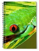 Red Eye Tree Frog Spiral Notebook