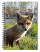 Red Fox Kit Spiral Notebook