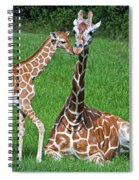 Reticulated Giraffe Calf With Mother Spiral Notebook