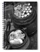 Revolutionary War Battle Site Spiral Notebook
