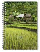 Rice Fields In Bali Indonesia Spiral Notebook