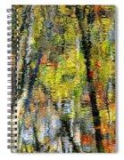 Rippley Reflection Spiral Notebook