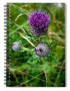 Roadside Flowers Spiral Notebook