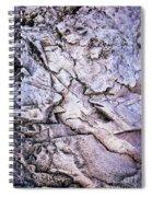 Rocks At Georgian Bay Spiral Notebook