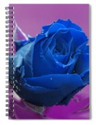 Rose Spiral Notebook