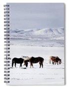 Ruby Mountain Winter Spiral Notebook