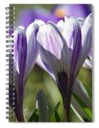 Salute The Sun Spiral Notebook