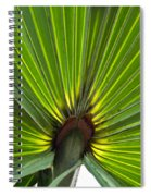 Saw Palmetto  Spiral Notebook