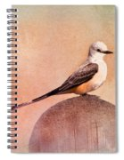 Scissor-tailed Flycatcher Spiral Notebook
