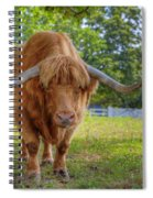 Scottish Highlander Ox Spiral Notebook