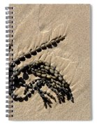 Seaweed On Beach Spiral Notebook