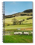 Sheep In Meadow Spiral Notebook