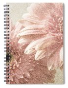 2 Silver Pink Painterly Gerber Daisies Spiral Notebook