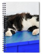 Sleeping Cat In Sifnos Island Spiral Notebook