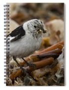 Snow Bunting Spiral Notebook