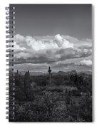 Sonoran Desert In Black And White  Spiral Notebook
