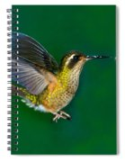 Speckled Hummingbird Spiral Notebook