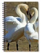 Spring Dance Spiral Notebook