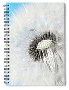 Spring Feelings Spiral Notebook