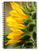 Sunflower From The Color Fashion Mix Spiral Notebook