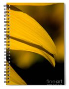 Sunflower Petals Spiral Notebook