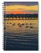 Sunset Geese Spiral Notebook