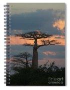 sunset in Madagascar Spiral Notebook