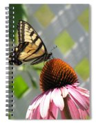Tiger Swallowtail On Coneflower Spiral Notebook
