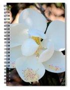 Sweet Magnolia Spiral Notebook