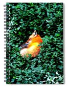 Sweet Slumber Spiral Notebook
