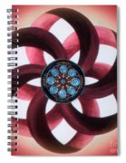 Synergy Mandala 3 Spiral Notebook