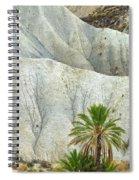 Tabernas Desert Spiral Notebook