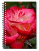 Tender Love Spiral Notebook