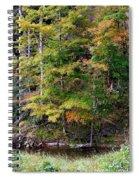 Tennessee Autumn Stream Spiral Notebook