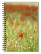 The First Poppy Of The Field Spiral Notebook