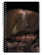 The Gallbladder Spiral Notebook