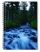 The Paradise River Spiral Notebook