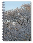 The Simple Elegance Of Cherry Blossom Trees Spiral Notebook
