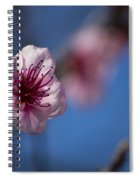 The Spring Is Coming Spiral Notebook