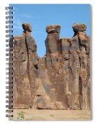 The Three Gossips Spiral Notebook