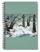 They Said It Wouldn't Snow Spiral Notebook